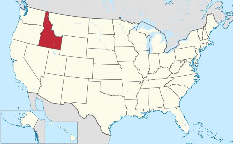 Idaho VIN Check