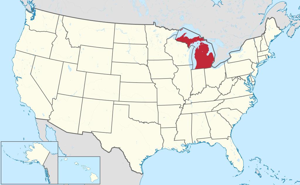 Michigan VIN Check