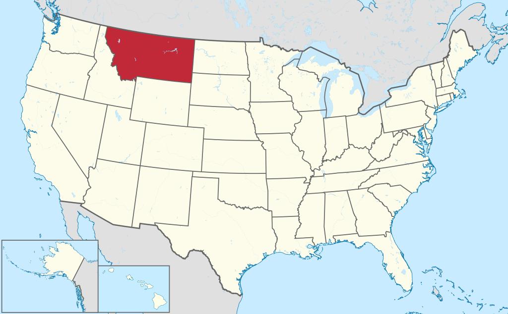 Montana VIN Check