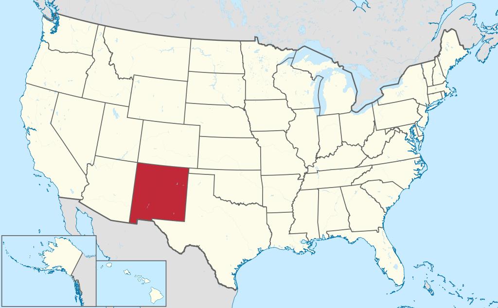New Mexico VIN Check