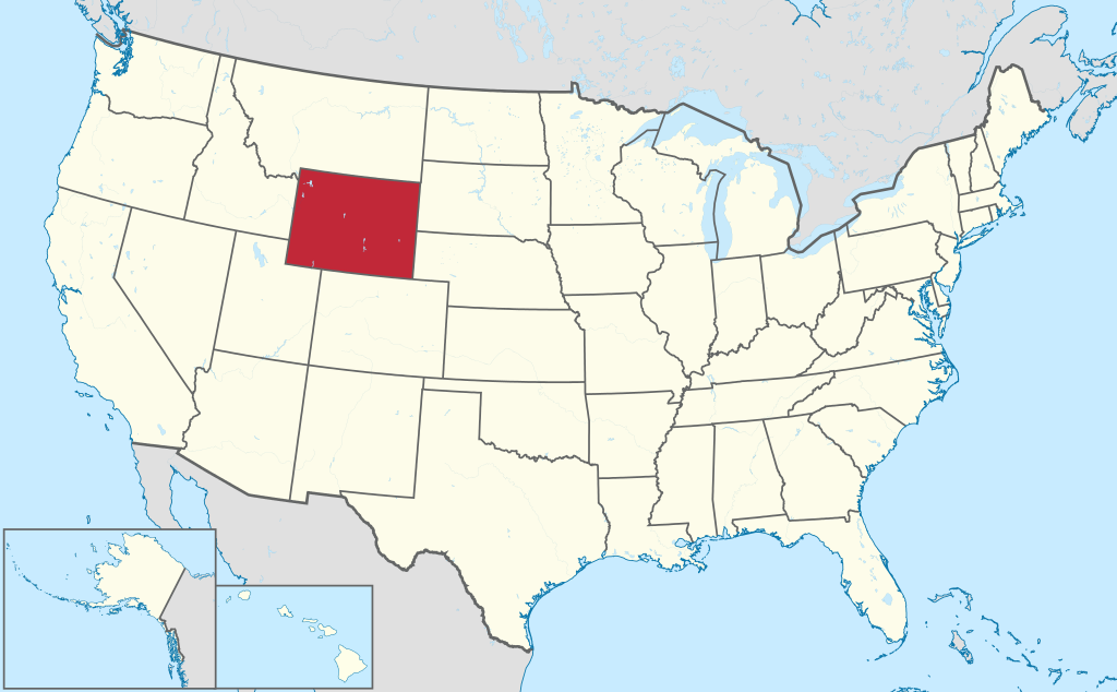 Wyoming VIN Check