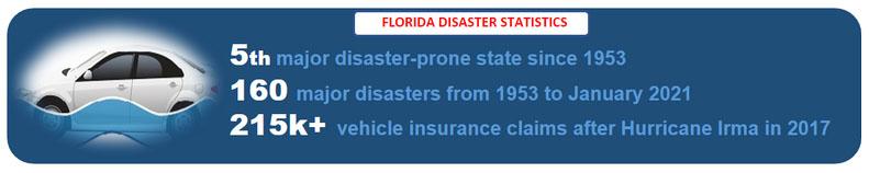 Florida Salvage Cars VIN Check